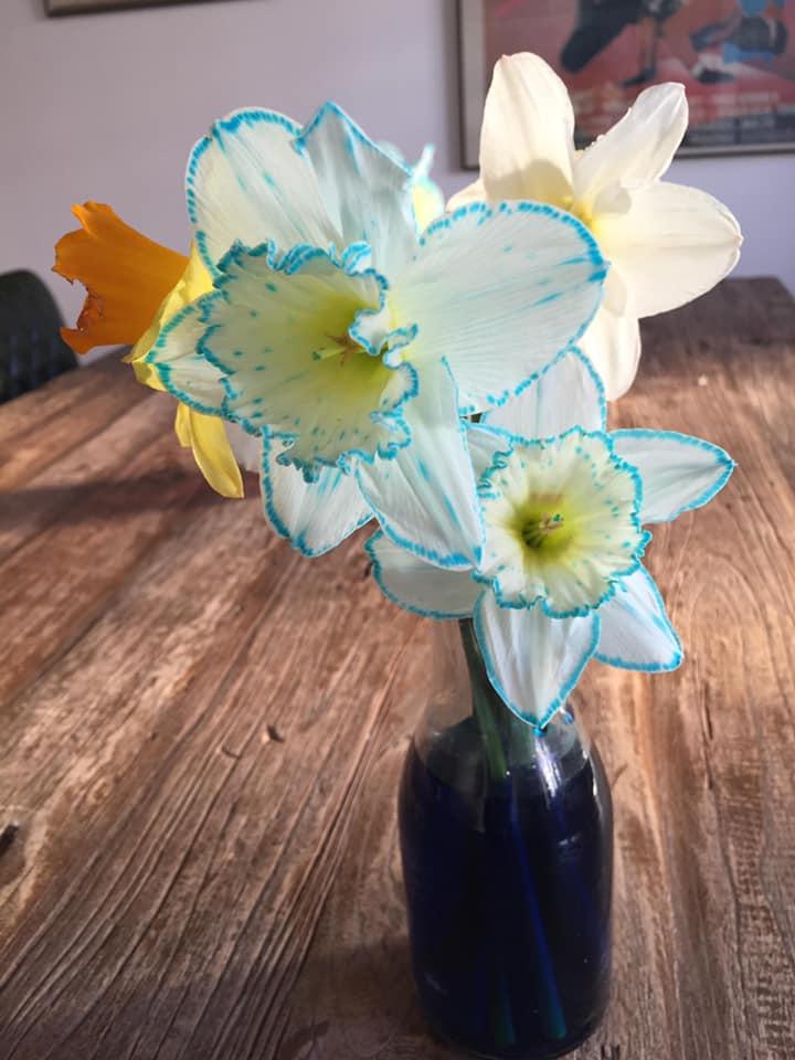 Blomster ændrer farve