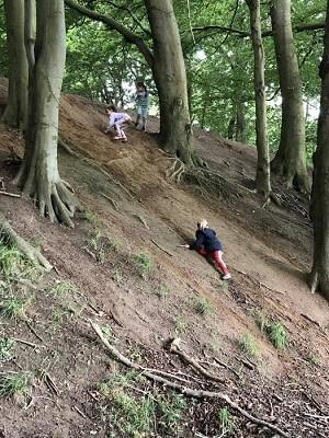 Billede fra idrætsbørnehaven Ta Fat, børn der klatrer