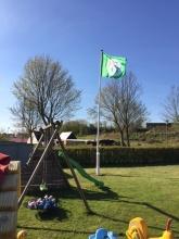 Naturdagplejernes grønne flag