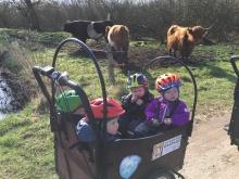 "Naturdagplejebørn siger ""Hej ko"""